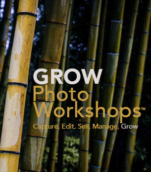 GROW Photo Workshops: STARTUP & GROW w/Kevin Kubota