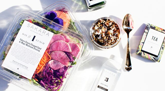 3-Day Organic Meal Delivery Program - Sakara Best Healthy Meal Delivery Organic