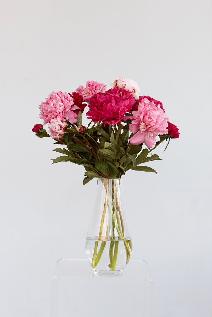 All one type of flower arrangement (peonies)
