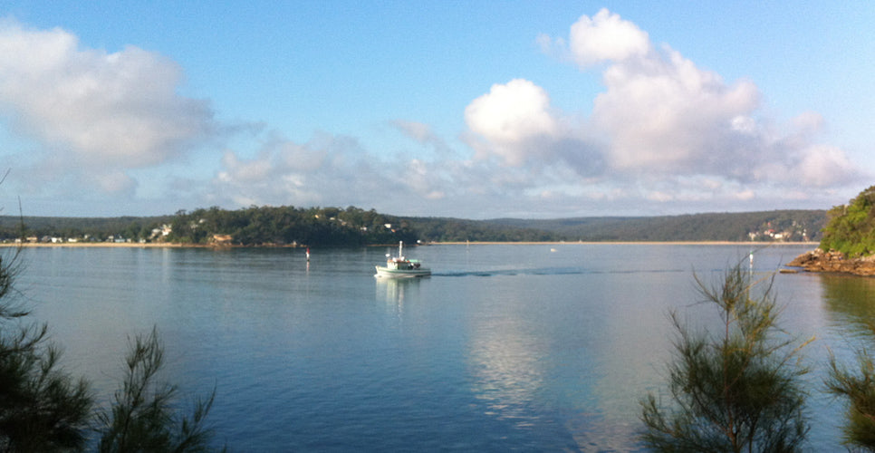 Cronulla Ferry overlooking Bundeena