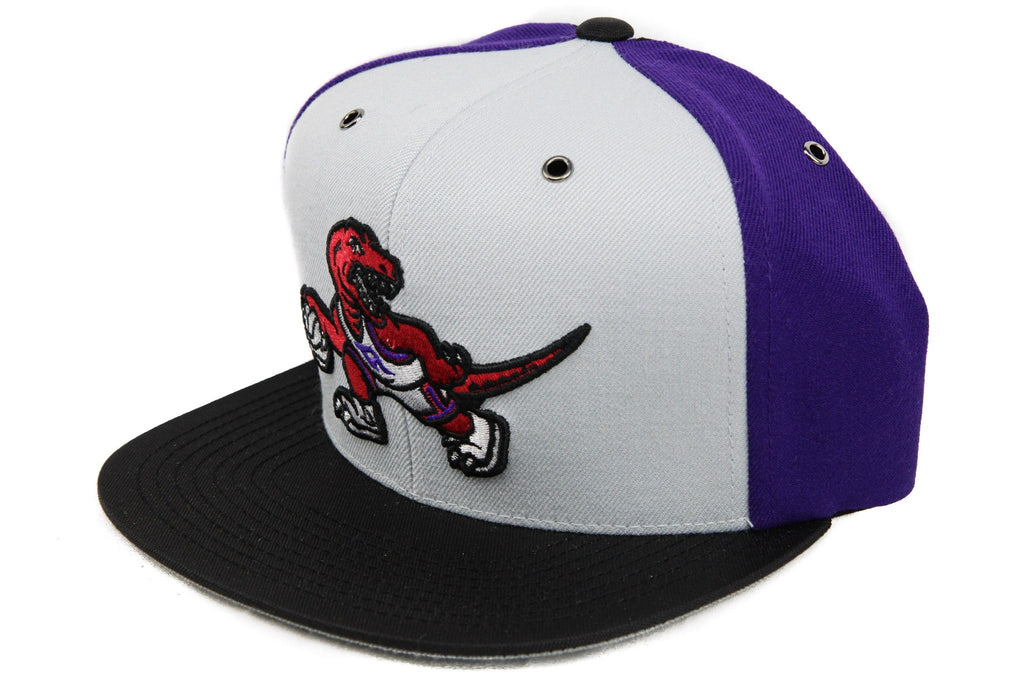 Toronto Raptors Logo NP Gray/Purple/Black Snapback - Bespoke Cut and Sew