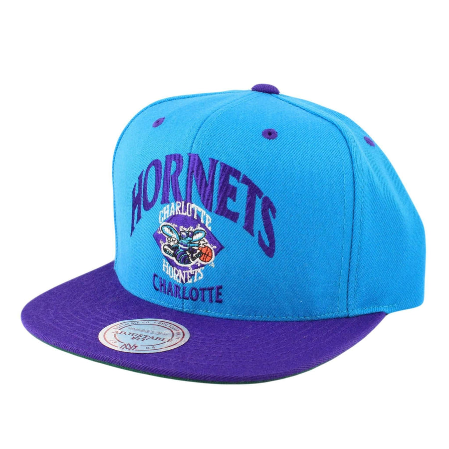 lowest price 4cc97 847a7 ... canada mitchell and ness charlotte hornets grand arch blue purple  snapback ff022 b1f92