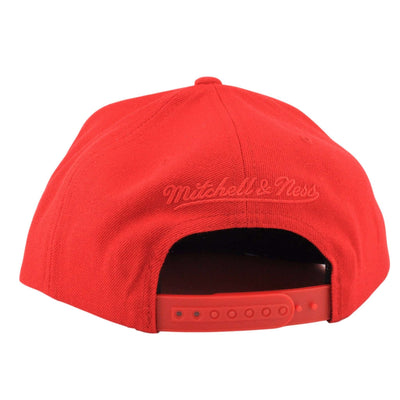 Mitchell and Ness Chicago Bulls 95-96 Wordmark Championship Red/Red Snapback