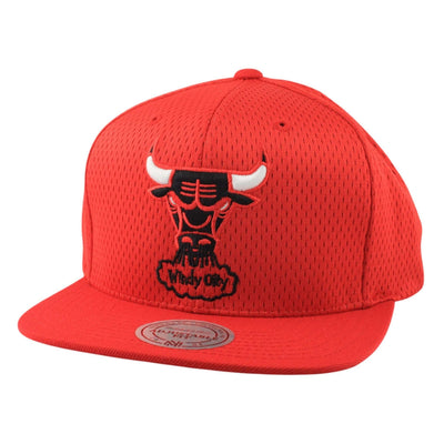 Mitchell and Ness Chicago Bulls Jersey Mesh Red/Red Snapback