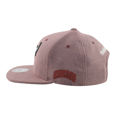 Mitchell and Ness Chicago Bulls Lincoln Purple/Purple Snapback