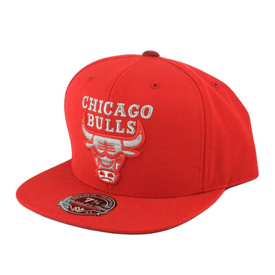 Mitchell and Ness Chicago Bulls TC Metallic Red/Red Fitted