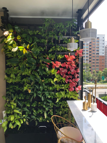 Midorie Green Wall System with water tank (mounted on drill-less steel structure)
