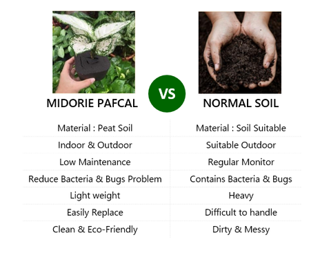 pafcal soilless growing media by midorie singapore