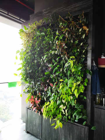 green wall system south beach tower