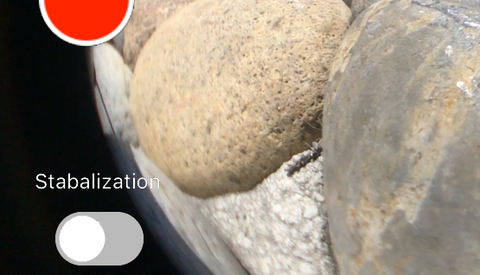 iphone camera stabilization switch