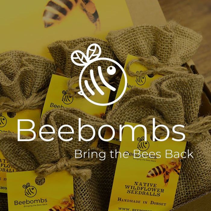 beebombs postal packaging bee friendly packaging wildflower seed mail order