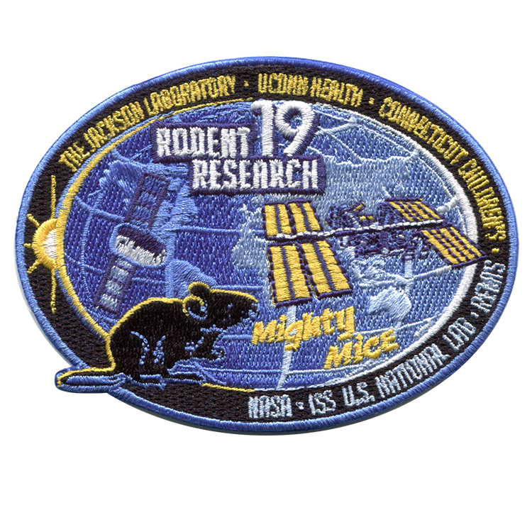 Rodent Research 19 - Space Patches
