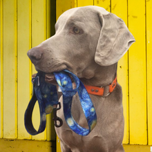 Load image into Gallery viewer, Hit the trails in style with AdventureUs fun & funky dog leashes.