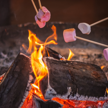 Load image into Gallery viewer, Mix up the end to your camping days with these fun variations on s'mores.