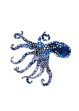 Load image into Gallery viewer, The Octopus