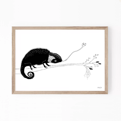 chameleon print, cameleon, print, animal illustration, majasbok print, Swedish illustrator,