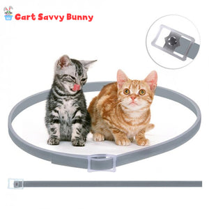 Flea and Tick Guard Cat Collar