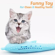 CATOY™ : Cat Dental Toy