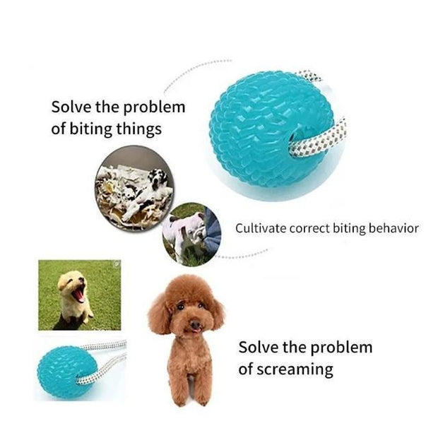 CHOY™ : Interactive Tug-of-war Dog Toy