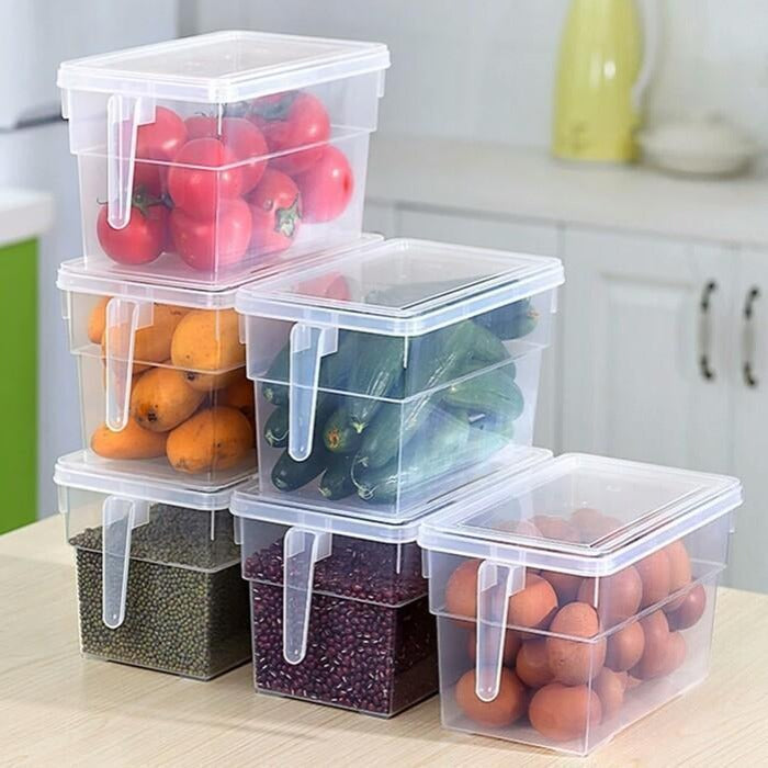 Storage Freezer Box with Handle - waseeh.com