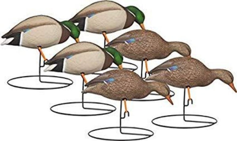 'Rugged' series | Full Body Mallard Feeder 6pk