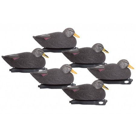 'Rugged' series | Magnum Black Duck 6pk