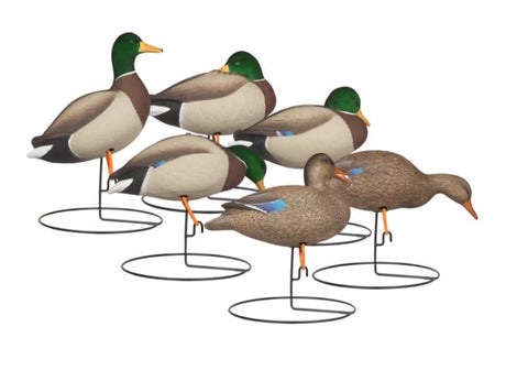 'Rugged' series | Full Body Mallard Touchdown 6pk