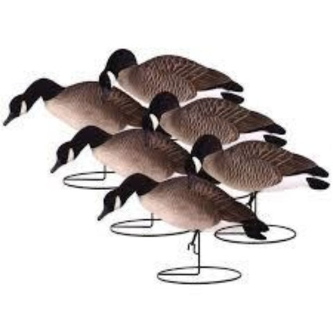 'Rugged' series | Canada Goose Full Body Feeder 6pk