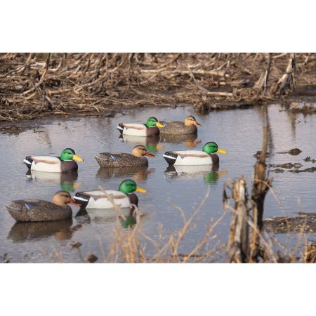 'Field' series | Mallard Floater 12pk