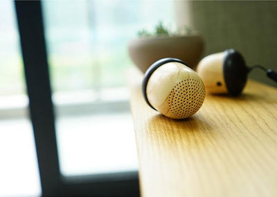 NUTNUT™ Portable Bluetooth Speaker + FREE USB Lamp