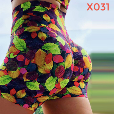 Agelyca™ High Waist Push Up Fitness Shorts (Style X017-X032)