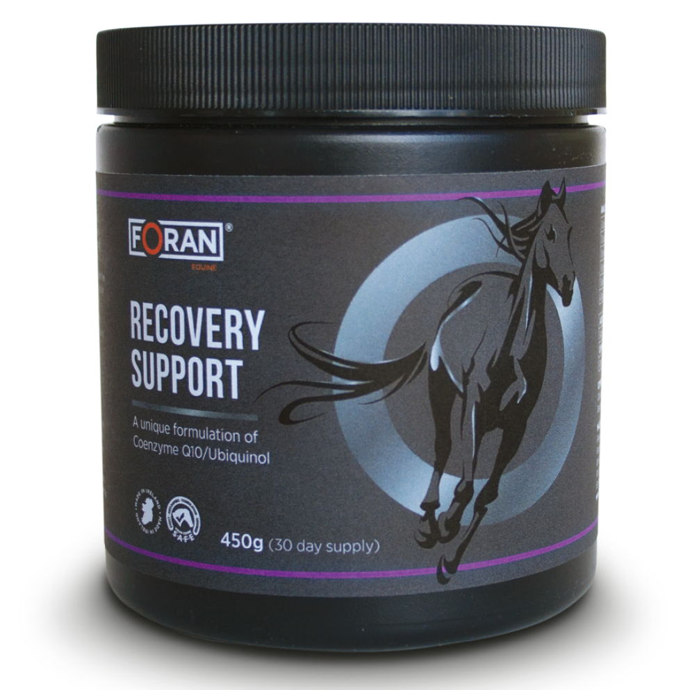 Recovery Support with Coenzyme Q10/Ubiquinol