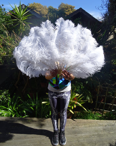 White Ostrich Feather Fans