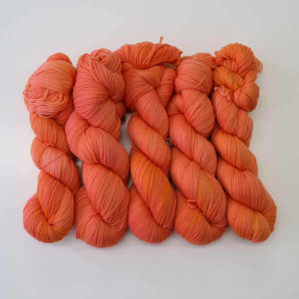 5-Pack of Apple Tree Knits Plush Fingering in Peach Taffy - KNITCRATE