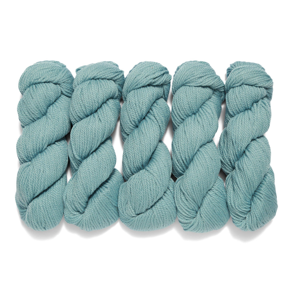 5 Pack of Vidalana Ambient Worsted in Michelangelo
