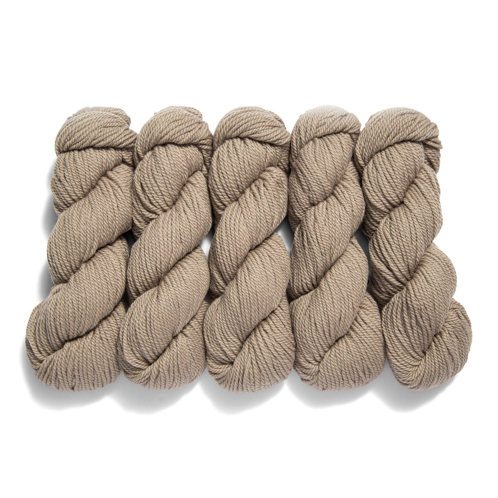 5-Pack of Vidalana Ambient Worsted in Sfumato