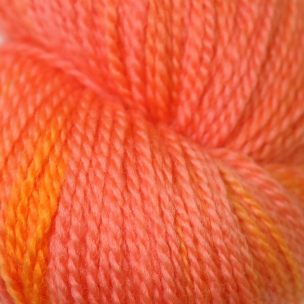 Apple Tree Knits Plush Fingering in Peach Taffy - KNITCRATE
