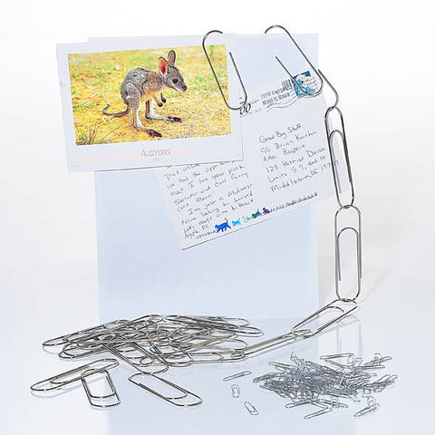 4-Inch Paperclip Set