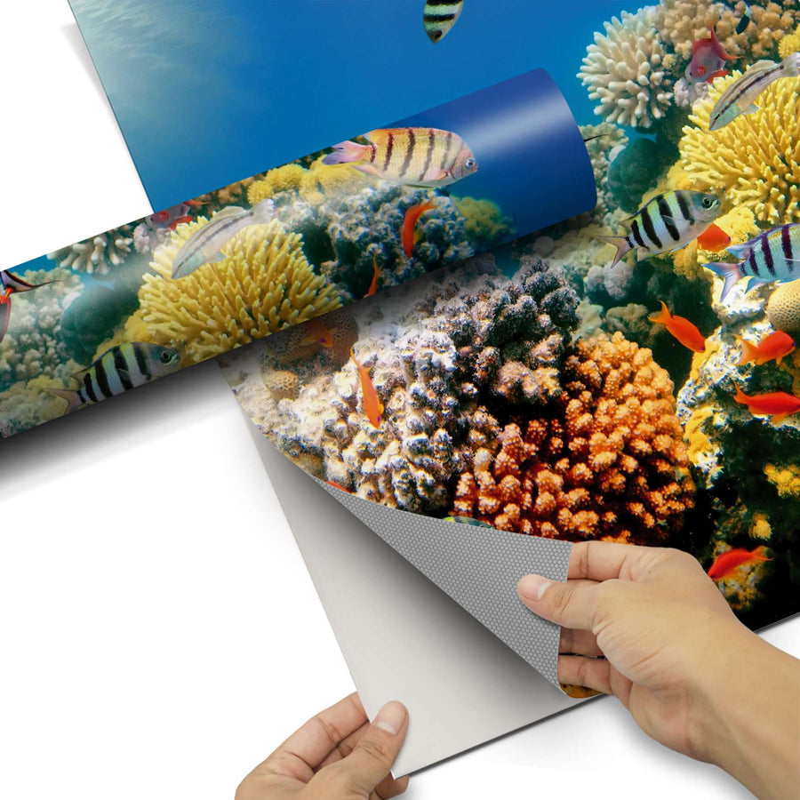 Dekorfolie Coral Reef - Do-it-yourself - creatisto
