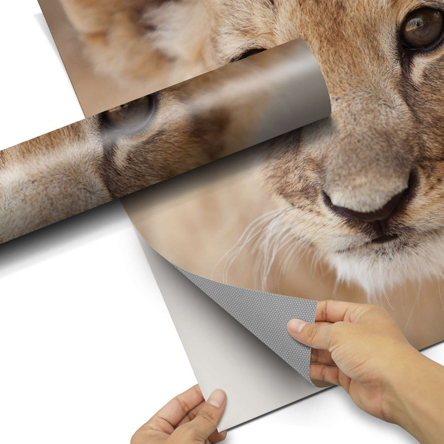 Dekorfolie Simba - Do-it-yourself - creatisto