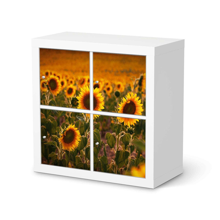 Möbelfolie Sunflowers - IKEA Expedit Regal 4 Türen  - weiss