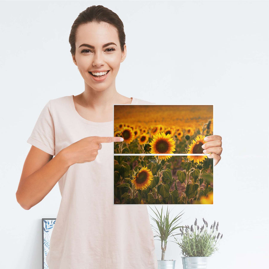 Möbelfolie IKEA Sunflowers - IKEA Expedit Regal Schubladen - Folie