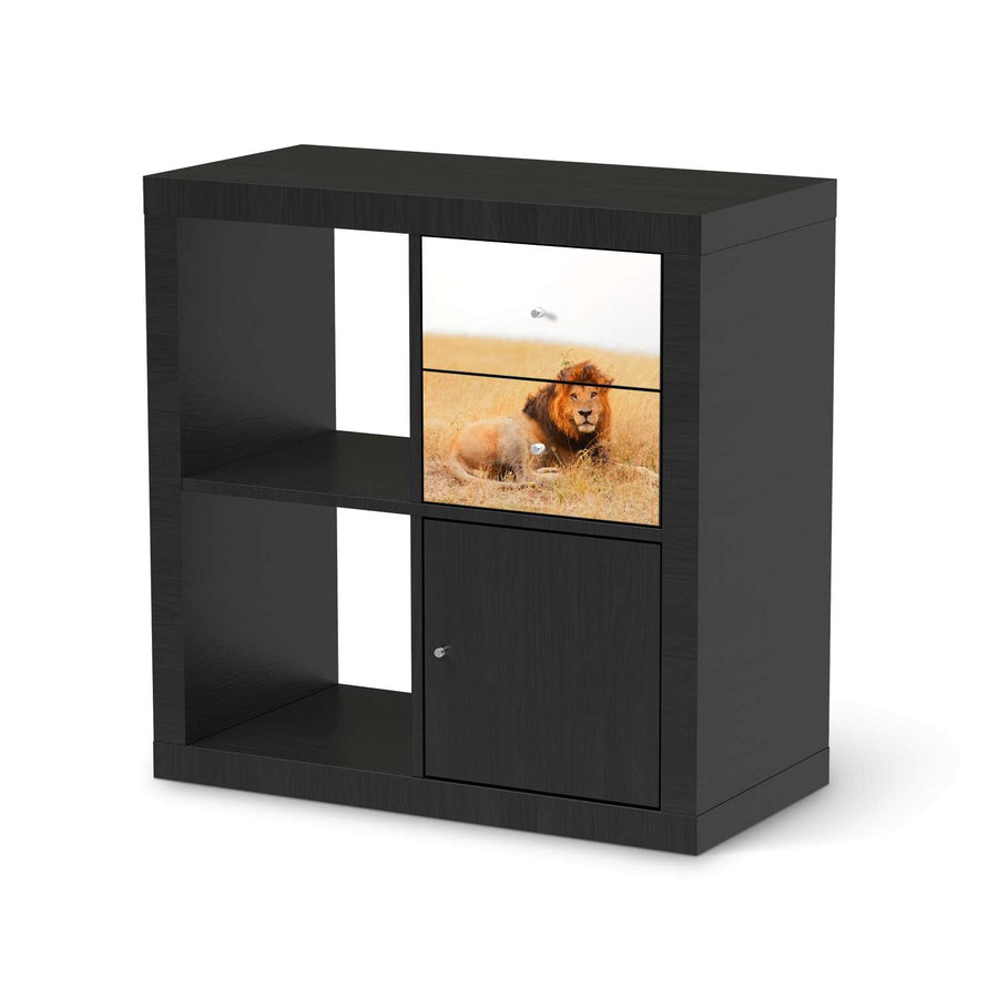 Möbelfolie IKEA Lion King - IKEA Expedit Regal Schubladen - schwarz
