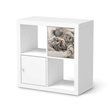 Selbstklebende Folie Kitty the Cat - IKEA Kallax Regal 1 Türe  - weiss