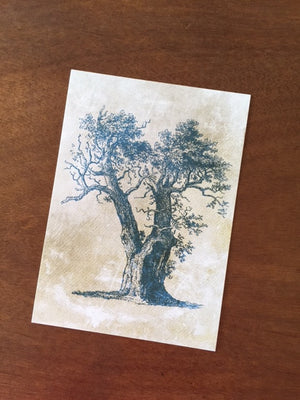 Art Prints - Farm Living Art Collection - Tree #6