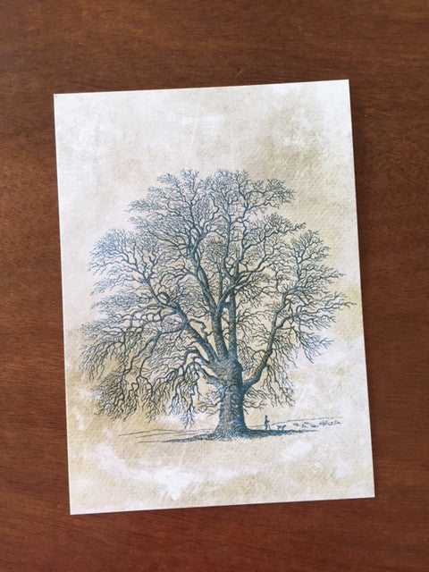 Art Prints - Farm Living Art Collection - Tree #7