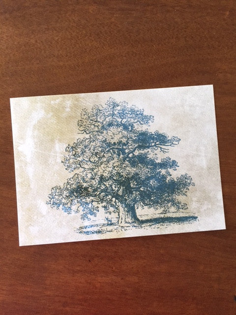 Art Prints - Farm Living Art Collection - Tree #10