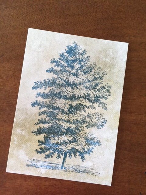 Art Prints - Farm Living Art Collection - Tree #9