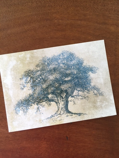 Art Prints - Farm Living Collection - Tree #8