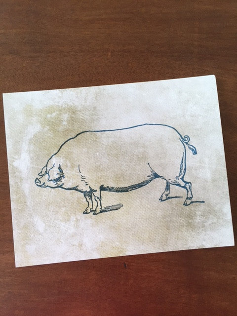 Art Prints - Farm Living Art Collection - Pig